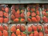 Fresh strawberry - photo 1