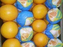 Апельсин - фото 4