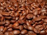 Best Price Roasted Arabica Coffee Bean From Vietnam - photo 2