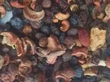 Dried Fruits and Nuts for Export - photo 5
