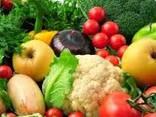 Fresh Vegetables - photo 1