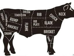 Halal Meat Beef wholesale export - photo 3
