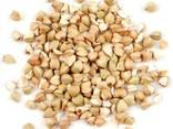 Organic Buckwheat Raw - photo 3