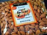 Raw Dried Bitter Apricot Kernels - photo 1