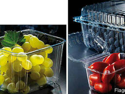 Transparent packaging for chicken and quail eggs for 6, 10, - photo 4